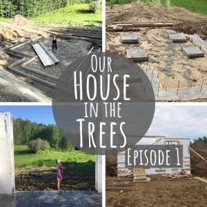 Our House in the Trees – Episode 1