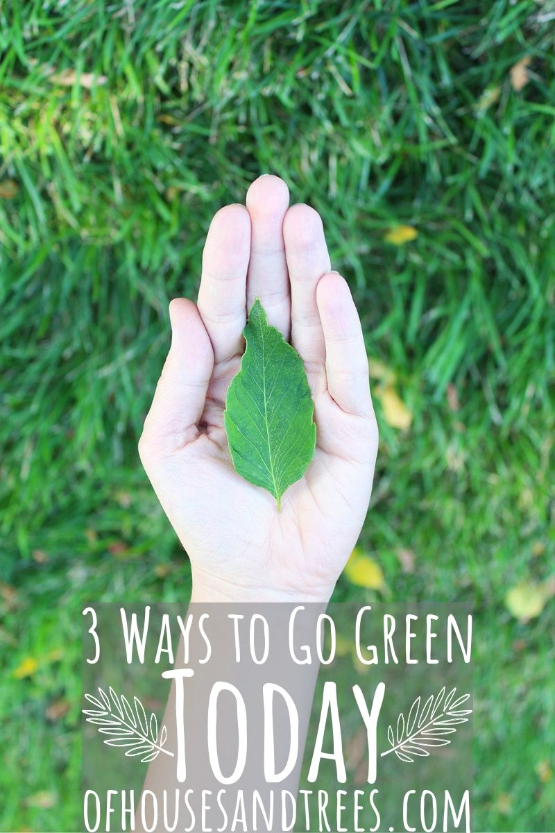 Being green isn't about being perfect. It's about trying to do a little bit better every day. Here are three simple things you can do to get started - right now!