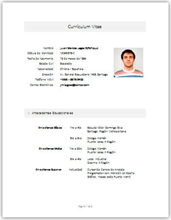 Modelos De Curriculum Vitae Simple En Formato Word Workers
