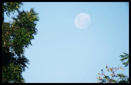 A Magia está por toda parte, consegue sentir? As bruxas que praticam magia natural amam admirar a Lua tanto quanto usar sua energia para seus feitiços e rituais. Foto gentilmente cedida por Caroline Andressa.