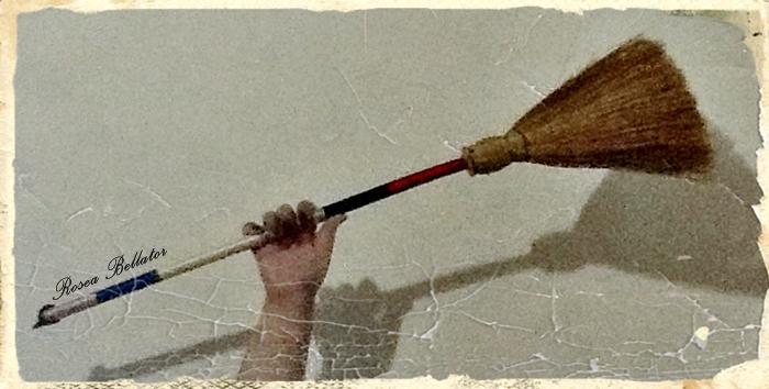 Ganhei esta vassoura da minha amiga bruxa Karyne Oliver. Minha primeira vassoura.