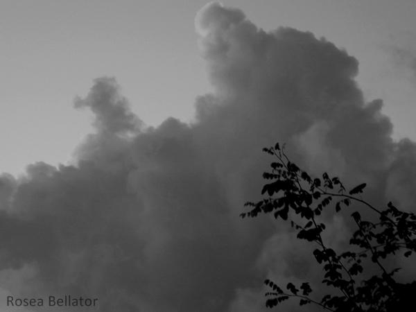 A insegurança é como uma nuvem cinzenta que aparece quando você está louco para sair... aí fica com aquele receio: sai ou não sai de casa? E aí perde um monte de oportunidades por bobeira... Foto: Rosea Bellator.