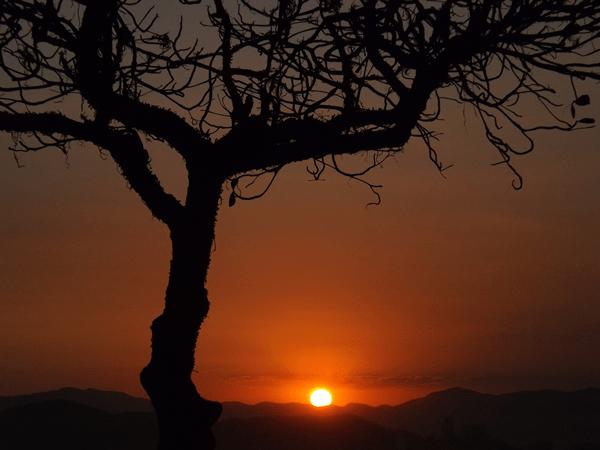 Pirlimpimpim - poesia das bruxas - rosea bellator