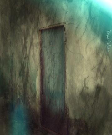 a caverna na floresta - rosea
