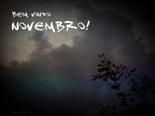 bem vindo novembro