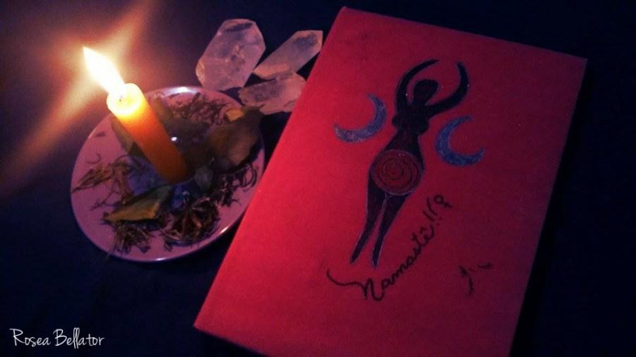Meu livro menstrual. É apenas um caderno que encapei com papel vermelho e desenhei.