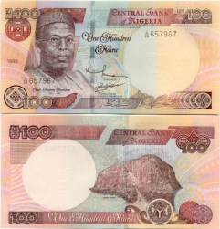 The Naira Is Dropping! But Should You Panic?