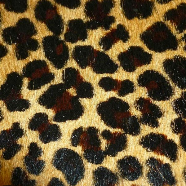 Leopard Hair-On-Hide Throw, Rug, Accent