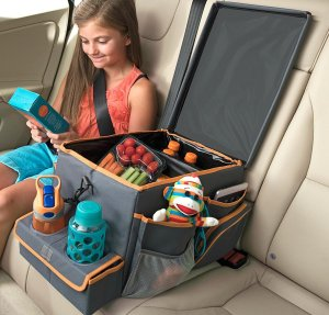 This will change your car ride forever! Store food, snacks and toys in this awesome backseat car organizer!