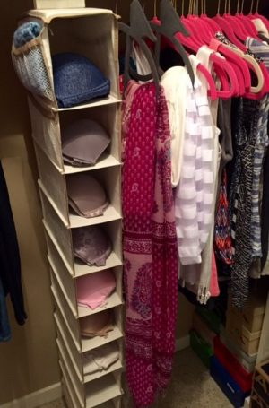 Use a hanging shoe organizer to store your bras in your closet. Repin!