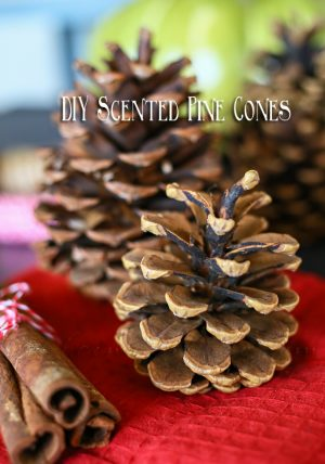 Spray pinecones with cinnamon oil and place around your home for the holidays