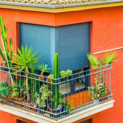 3 Types of Window Shutters That'll Enhance Your Home Decor