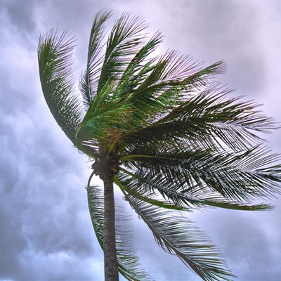 Here's what you should know when preparing for stormy weather.