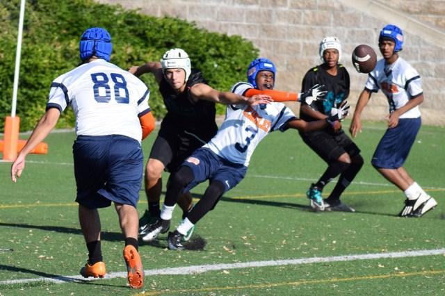 sports_eaglesspartans