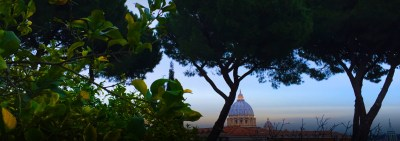 The Feast of St. Francis in the Vatican Gardens |  A celebration of The Season of Creation, and the Dedication of the Synod to St. Francis