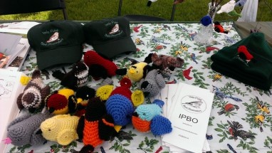 Colourfully crafted birds at the Innis Point Bird Observatory booth.