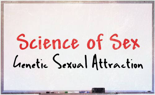 science of sex genetic sexual attraction