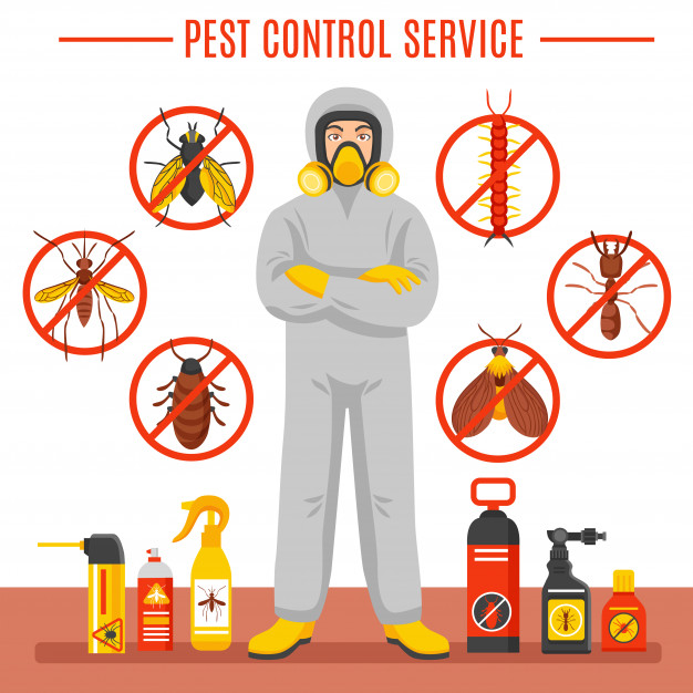 How to Hire Professional Pest Control Services?