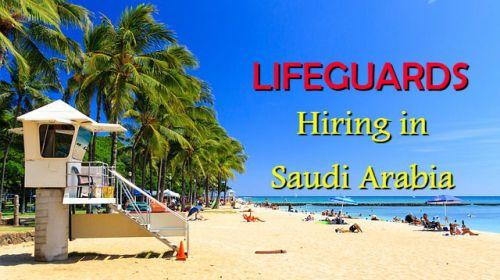 lifeguards-job