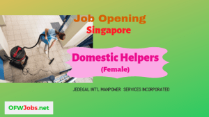 singapore-job-hiring-domestic-worker