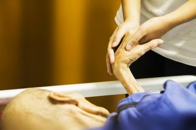 caregivers-job
