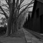 山居倉庫へカメラ片手に散歩