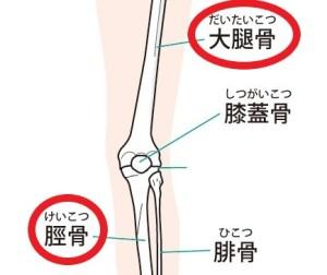膝周囲の図
