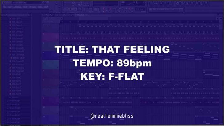 Temmiebliss - That Feeling Freebeat