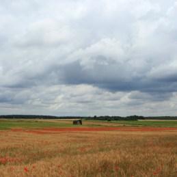 Klaprozen Loire