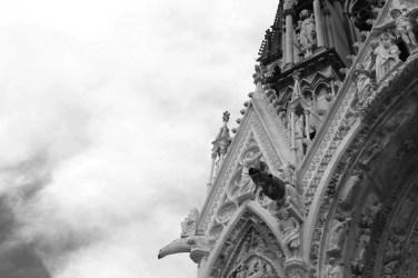 Reims kathedraal detail