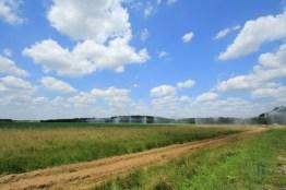 landbouw in de Loirestreek