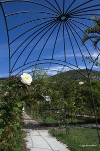 Il Roseto di Villa Grimaldi