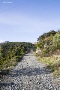 Il Sentiero Natura