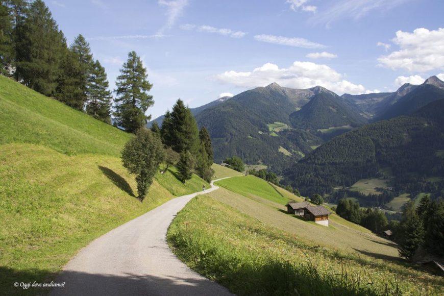 La strada forestale per Telves di Sopra