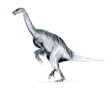 766px-Erlikosaurus_feathered