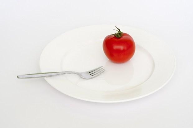 plate-403597_1920