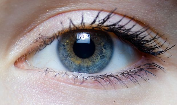 1200px-Iris_-_right_eye_of_a_girl