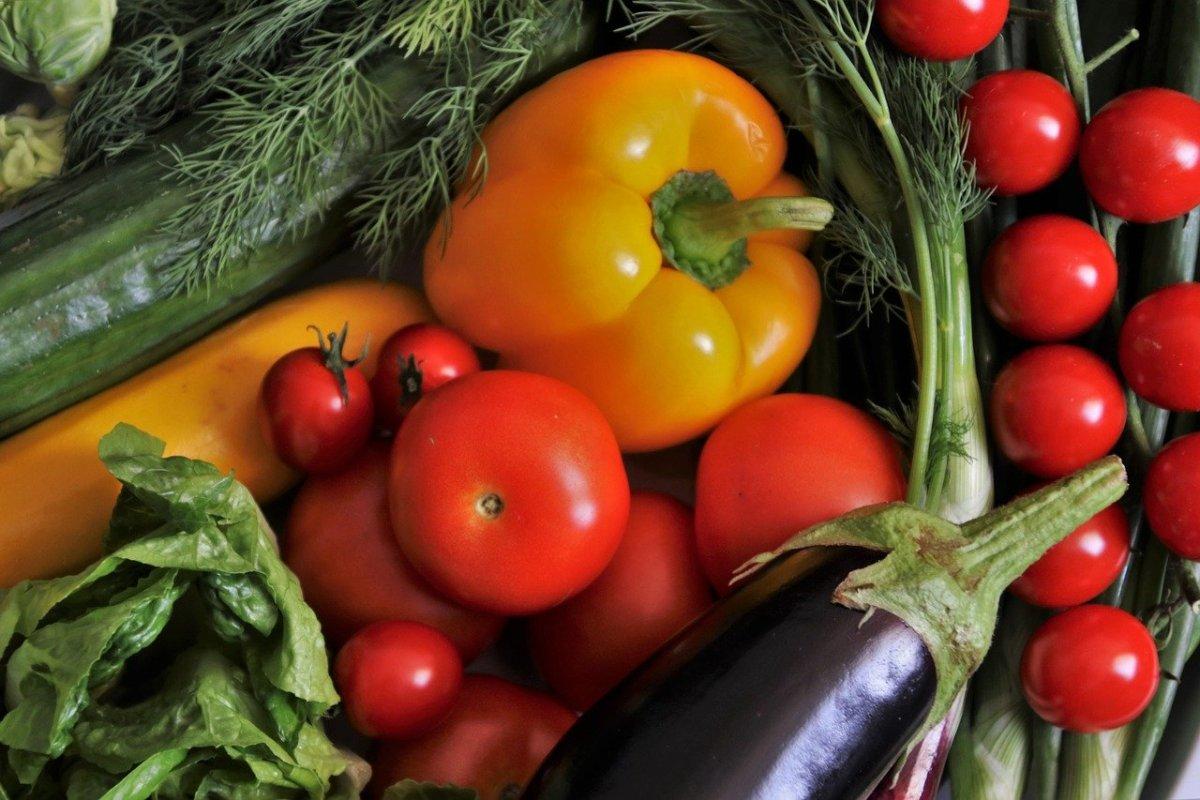 Vegetariani e vegani in italia un istantanea oggiscienza for Quanti sono i membri del parlamento italiano
