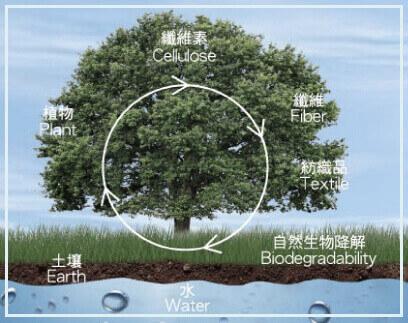 天絲製作過程環保無毒