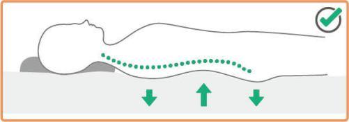 正躺時脊椎曲線與站立時的曲線一樣呈現S型
