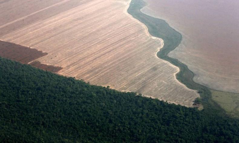 Floresta amazônica delimitada pela terra desmatada para o plantio de soja, no Mato Grosso, em outubro de 2015. Números do Instituto Nacional de Pesquisas Espaciais (Inpe) apontam que desmatamento na Amazônia em junho cresceu quase 60% em relação ao mesmo período em 2018 Foto: Paulo Whitaker / REUTERS