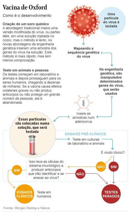 Como é o desenvolvimento da vacina de Oxford contra a Covid-19 Foto: Editoria de Arte