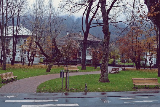 Parcul Central al Bistritei