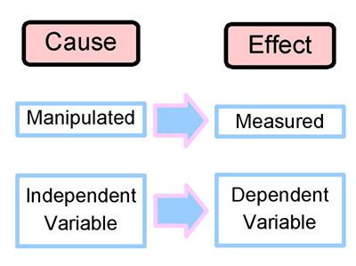 Scientific Method - OGMS-Science