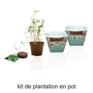 kit de plantation en pot