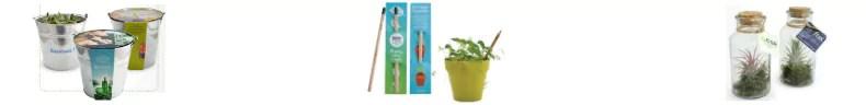 OgrafX nature eco friendly plante