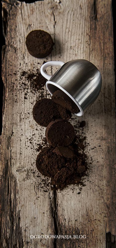 fusy z kawy jako nawóz