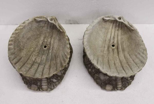 Stone Shells Fountain Spout Olde Good