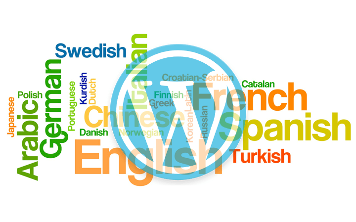 En İyi WordPress Eklentileri – Loco Translate