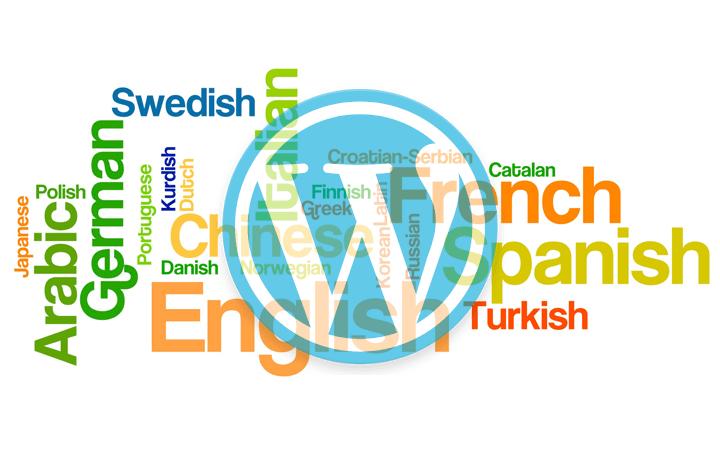 En İyi WordPress Eklentileri – Loco Translate
